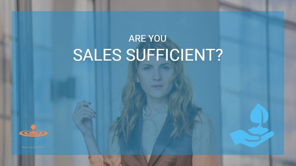 Is Your Business Sales Sufficient? [Abraham Maslow's Hierarchy of Needs Applied to Business] 7
