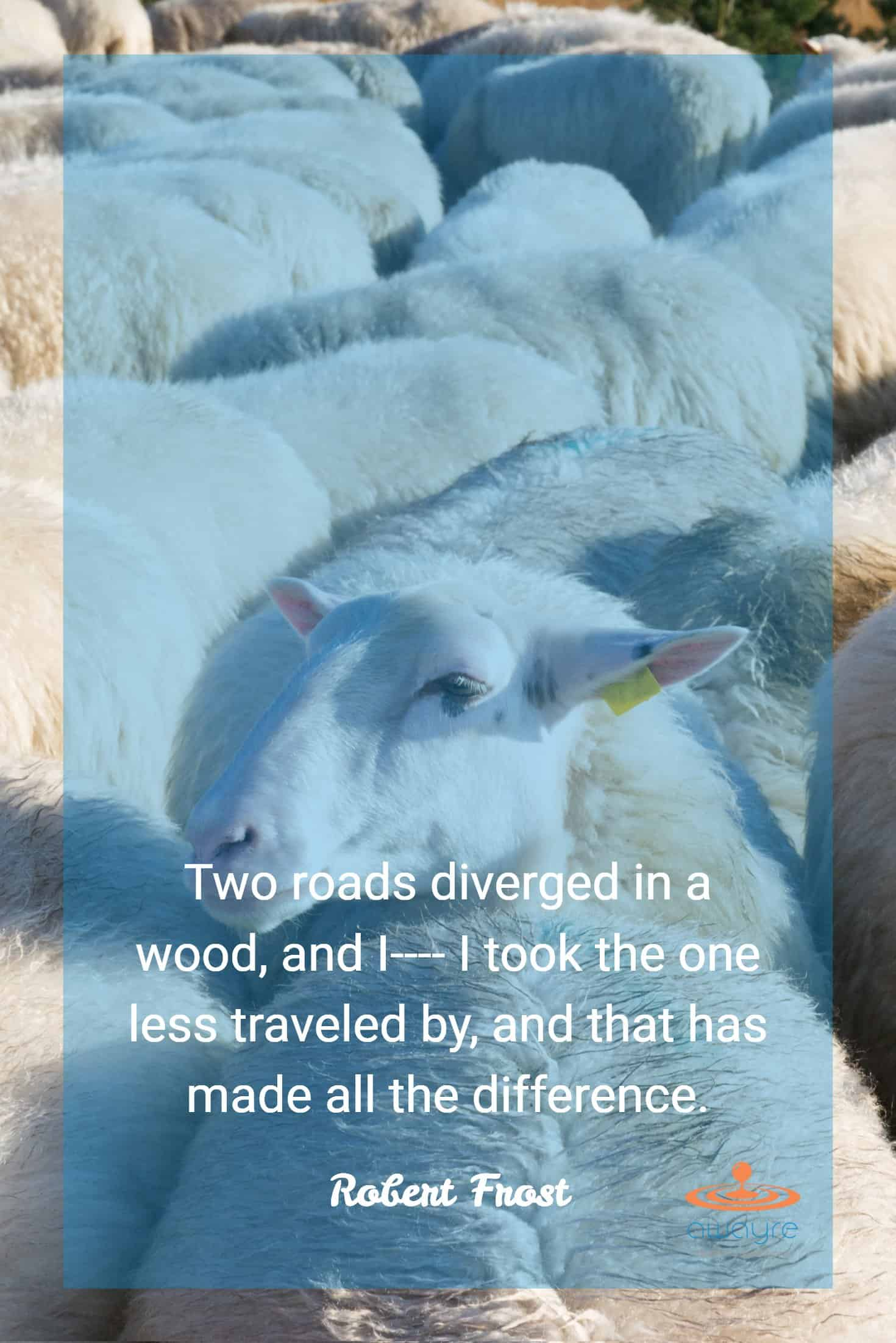 Recession Proof Business Two Roads Diverged Robert Frost Quote Retina